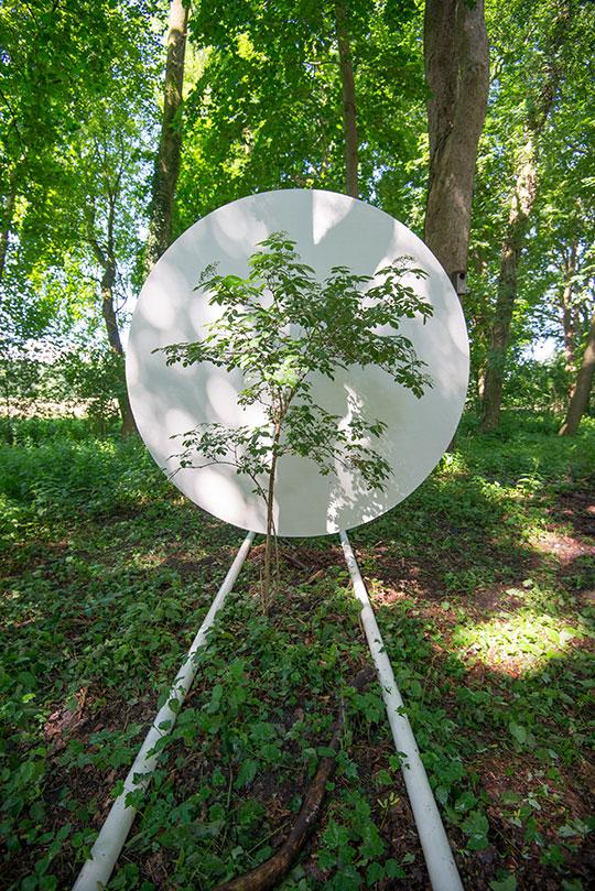 Portable-Site-TREE-web-3