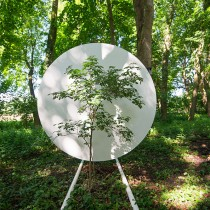 Portable-Site-TREE-web-5