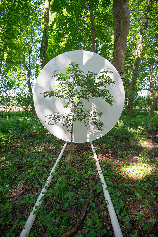 Portable-Site-TREE-web-3